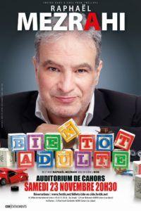 Création de l'affiche du spectacle Bienôt Adulte pour Raphaël MEZRAHI